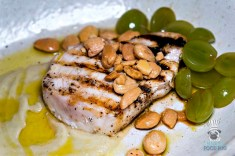 Sugarcane - Made In Dade - Swordfish Ajo Blanco