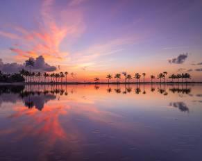 Miami Glasnik Matheson_Hammock_Clouds