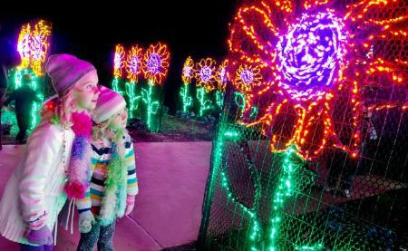 Pinecrest Gardens Nights Of Lights Miami On The Cheap