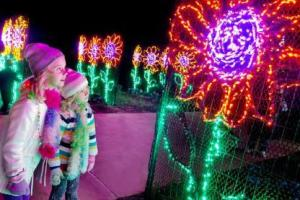Pinecrest Gardens Nights of Lights
