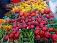 Coral-Gables-Farmers-Market-Saturdays
