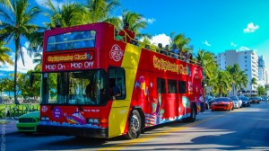 Hop On Hop Off Bus Tours