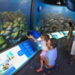 Free events for kids at attraction in Key West