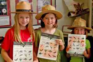 Free Junior Ranger Day at Everglades National Park