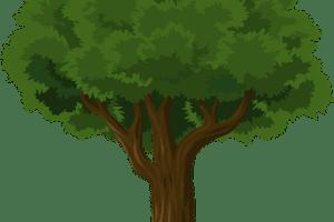 Free tree giveaway