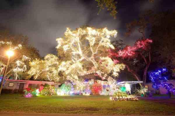 christmas lights miami # 9