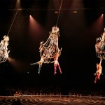 Cirque du Soleil 'Corteo' deals