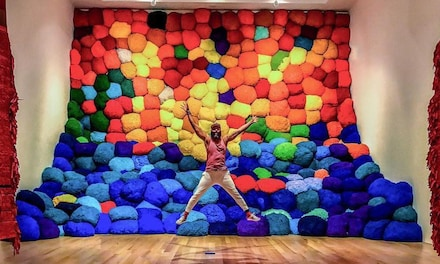 Admission for One or Two or Family Admission Package to The Bass Museum of Art (Up to 64% Off)