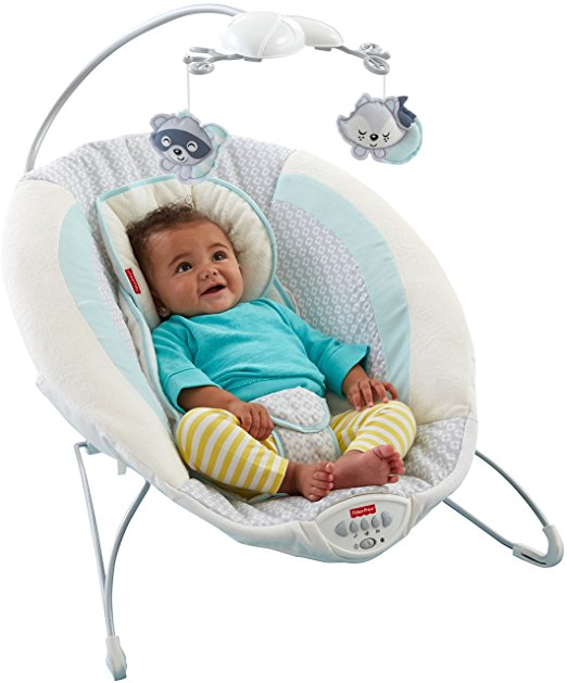 Fisher-Price Moonlight Meadow Deluxe Bouncer 2