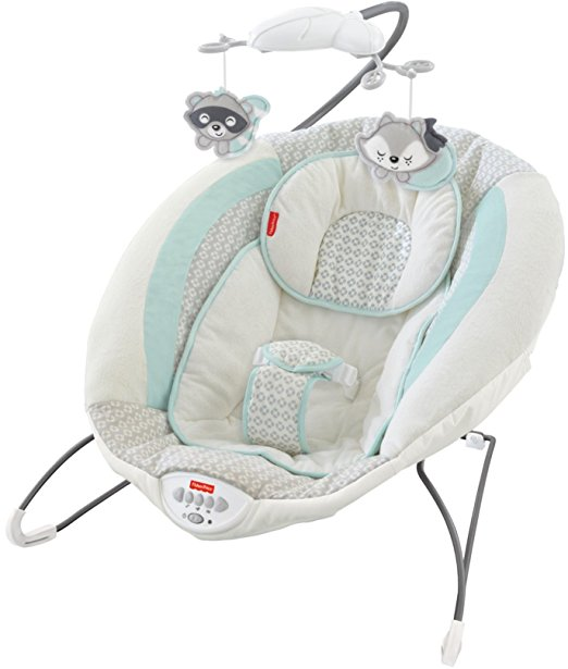 Fisher-Price Moonlight Meadow Deluxe Bouncer 4