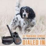 Coleira De Adestramento Sportdog Fieldtrainer Sd 425x vibração e tom – à prova d'água, recarregável2