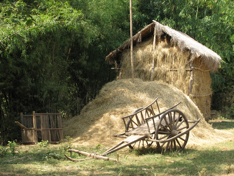 ox cart and hay hut