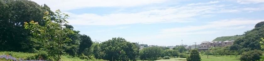 header-観音崎公園