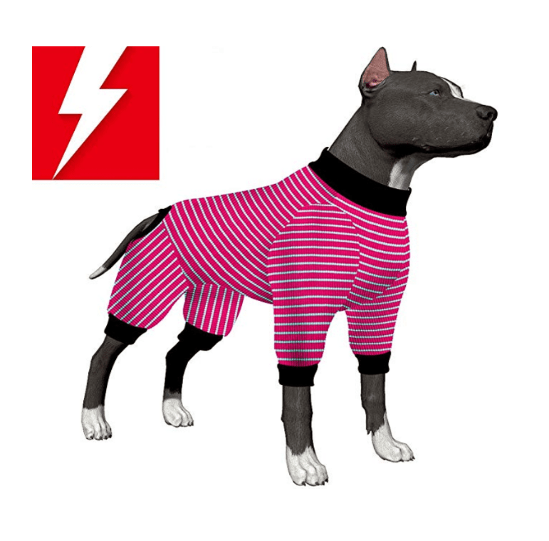 The 10 Best Dog Pajamas for Snuggly Doggie Bedtime