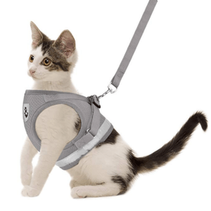 GAUTERF Pet Universal Harness with Leash Set
