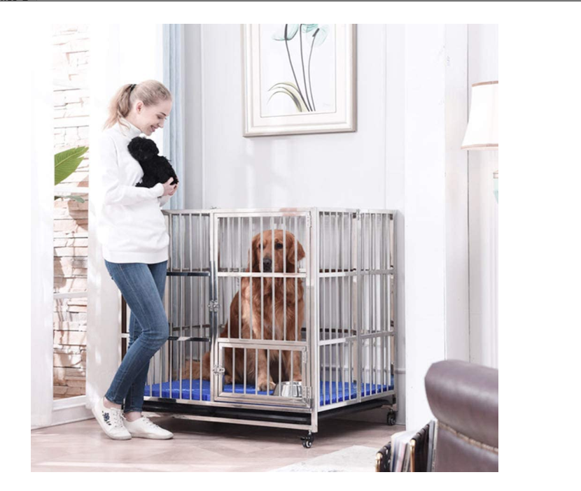 Read more about the article The Best Training Dog Crates