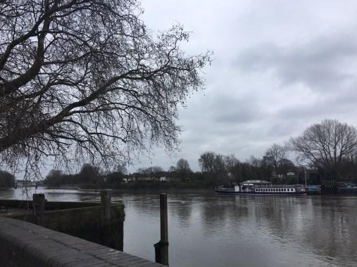 Thames in Kew Bridge