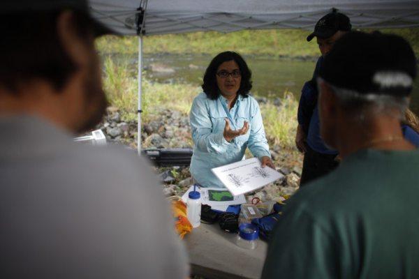 La bió—loga doctora Concepci—ón Rodrí'guez, realiza un estudio con voluntarios sobre el comportamiento de los camarones de río en el Río Grande de Manatí en el área de Mata de Plátano en Ciales. (fotos suministradas por Ciudadano Científico)