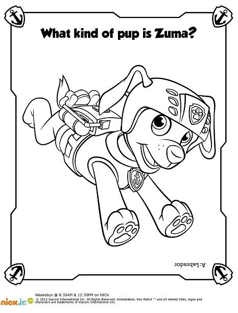 Paw Patrol Dibujos Para Colorear Mega Colección Mi Barquito