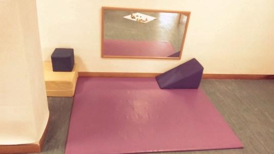 Instalaciones Mi Bichito en Valdemoro (2) (1)