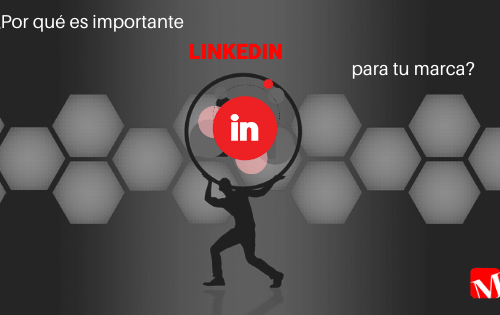 LinkedIn, especialista en marketing digital