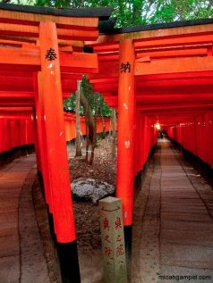 fushimi-inari-torii-crossroad-kyoto-micah-gampel-2010