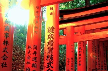 fushimi-inari-torii-sunset-kyoto-micah-gampel-2010