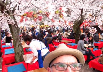 hanami-maruyama-park-kyoto-micah-gampel-april-2011-3532