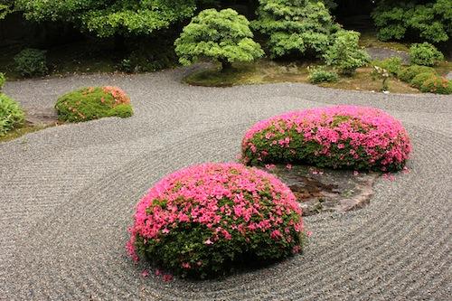 myoshinji-june-2012-kyoto-micah-gampel_4098-copy