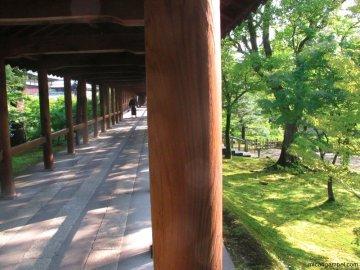 tofukuji-temple-walkway-kyoto-micah-gampel-2010