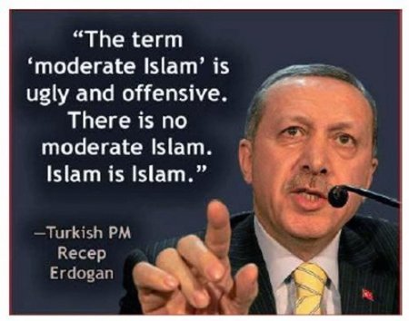 erdogan-moderater-islam