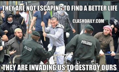 migranten-ollen-die-macht