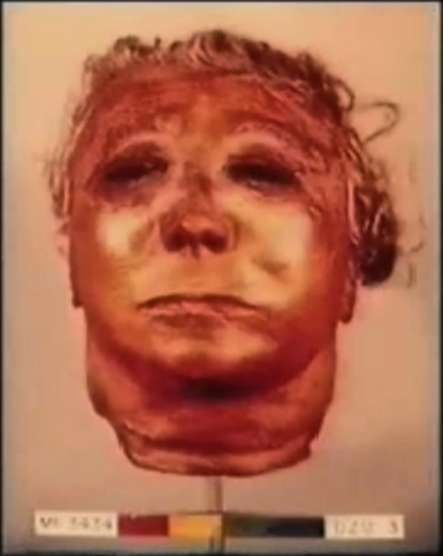 Ed Gein Mask Resembles Michael Myers
