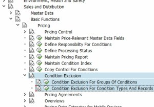 Condition Exclusion configuration nodes in the IMG.