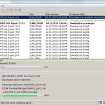SAP Download Manager In Action