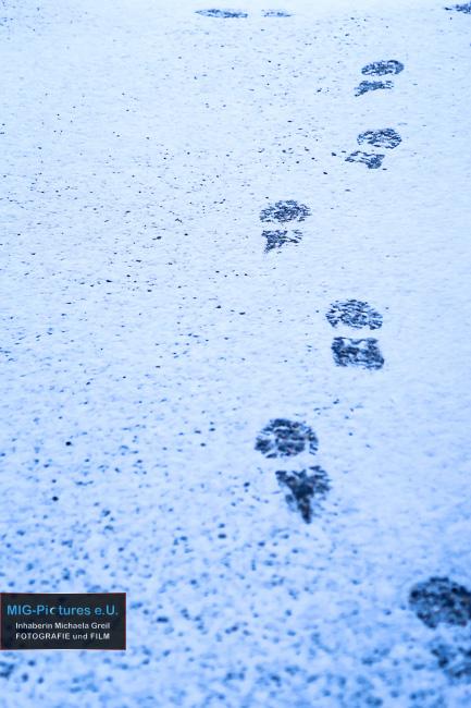 6D/Fb: Neujahr: Gestern, heute, morgen. – Prosit Neujahr 2016! – Impuls-Reihe Teil 9 – Lange Nacht der Kirchen