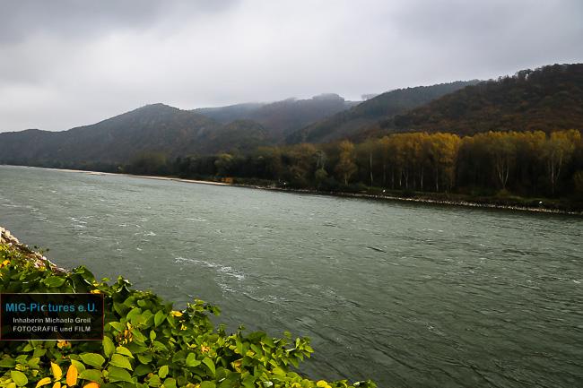 6D/A3 – General Picture Release: Stimmungsbilder – Lichtblick und Herbst in der Wachau an der Donau/Niederösterreich, 24.10.2016 – Landschaftsfotografie