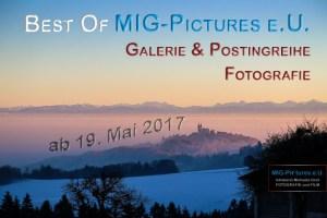 Foto: © 2017 Michaela Greil/MIG-Pictures e.U.