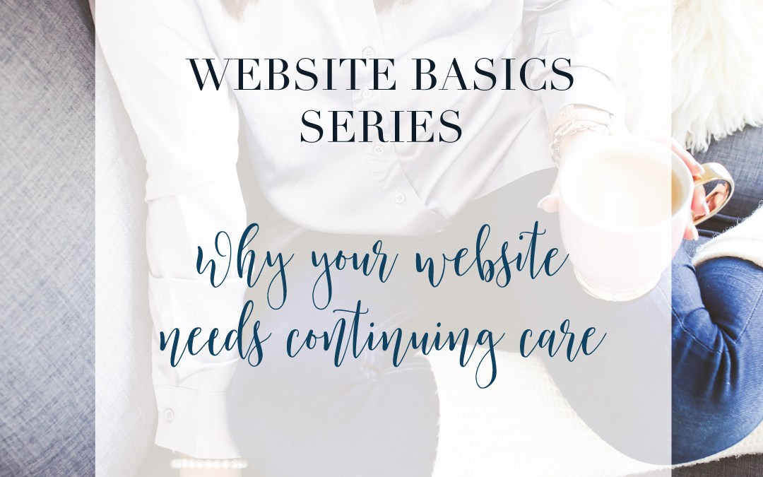 Web Basics Series: Why you need to care for your website and not fix it and forget it