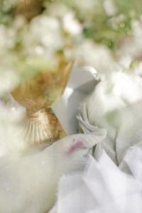 Verlobungsring Hochzeit im Garten Hochzeitsfotografi