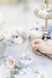 Cake Pops Hochzeit