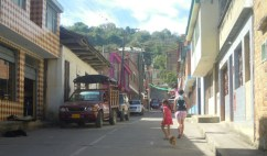 Miraflores street scene