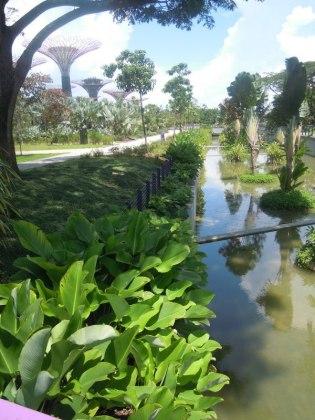 Walk way to gardens