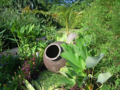 Garden at Hort Park in Singapore