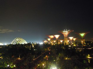 cloud forest and dome at night