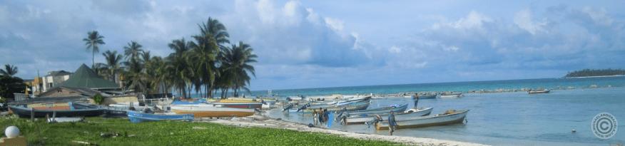 Colorful boats along the shore