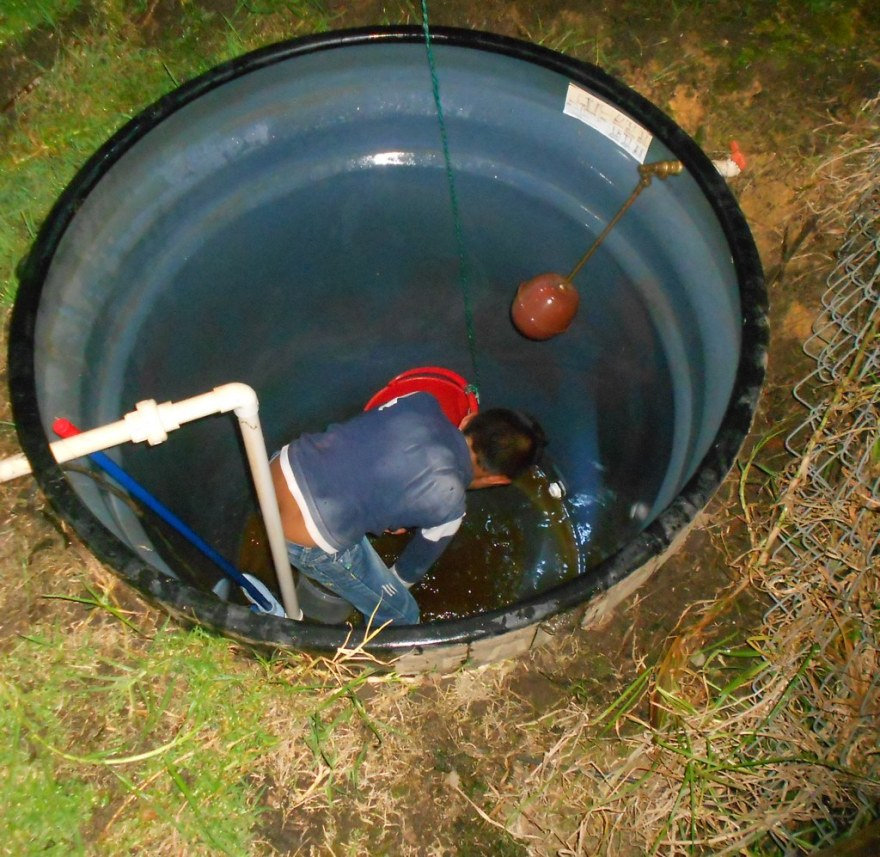 Cleaning the water tank