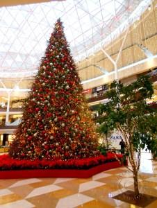 CC Fontanar in Chia Christmas Tree