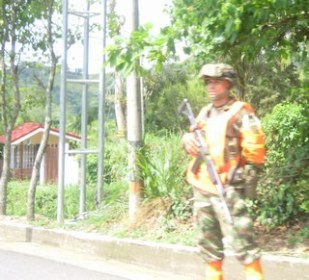 Guard in road