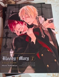 Bloody Mary 7 Artbook